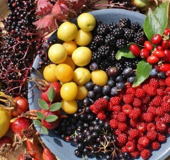 Berries and fruit