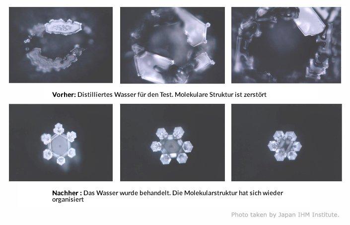 www.wasser-lebenselixier.de