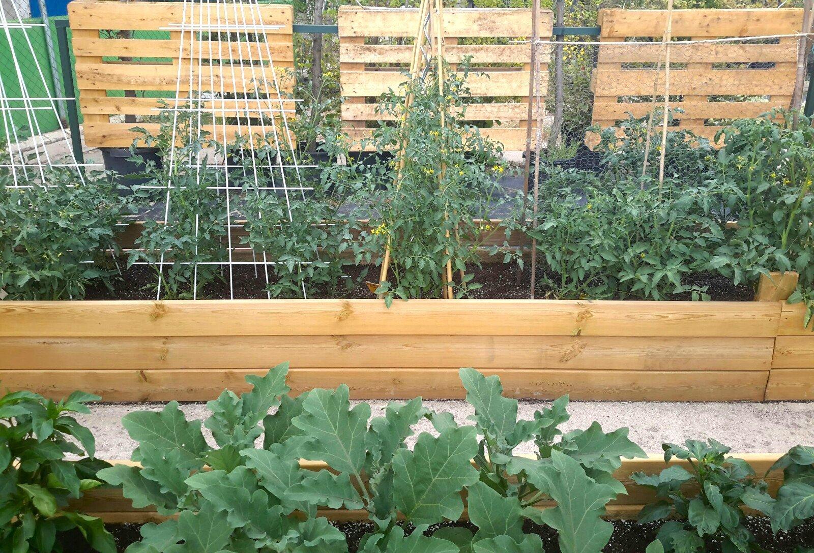 Centros de jardiner a arag n - Centro de jardineria madrid ...