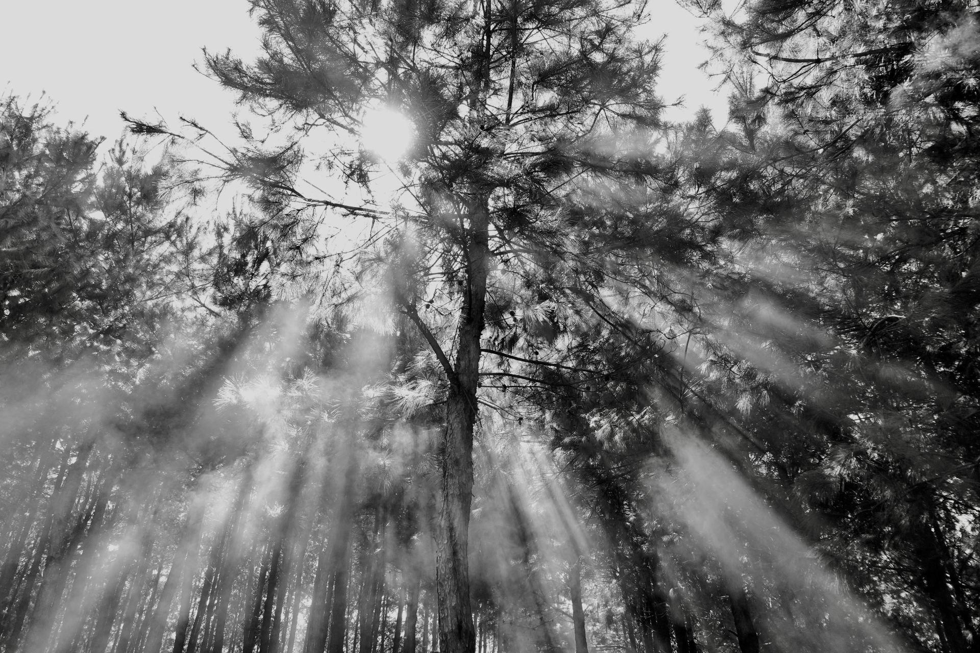 Flickering Lights Spiritual Meaning