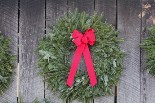 Christmas Tree Adventures Wreaths & Greenery