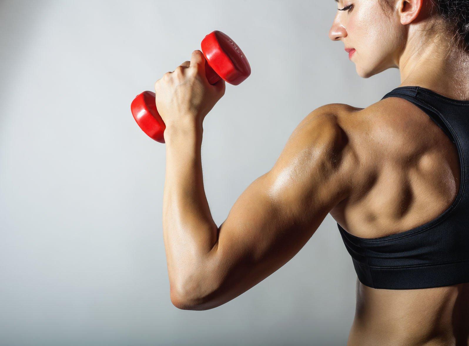 muskelaufbau ohne abnehmen