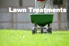 Eastleigh Lawn Treatments