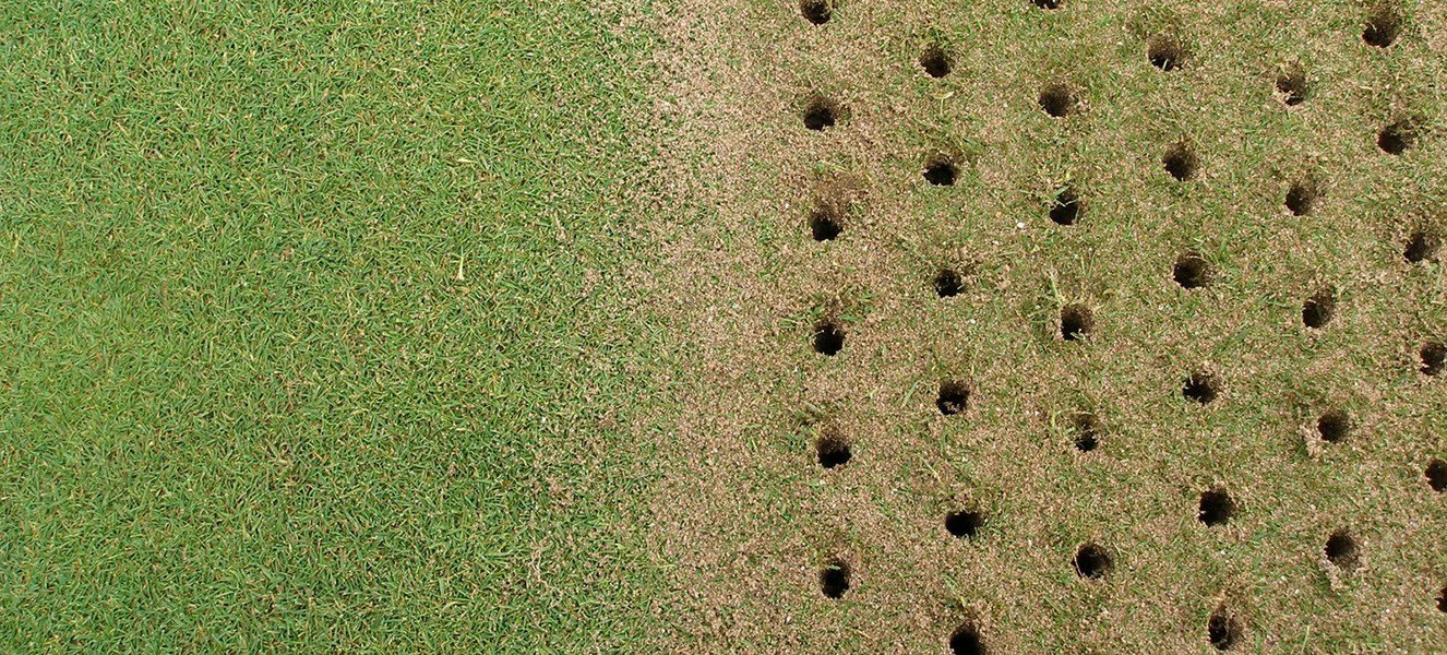 Lawn Aeration holes