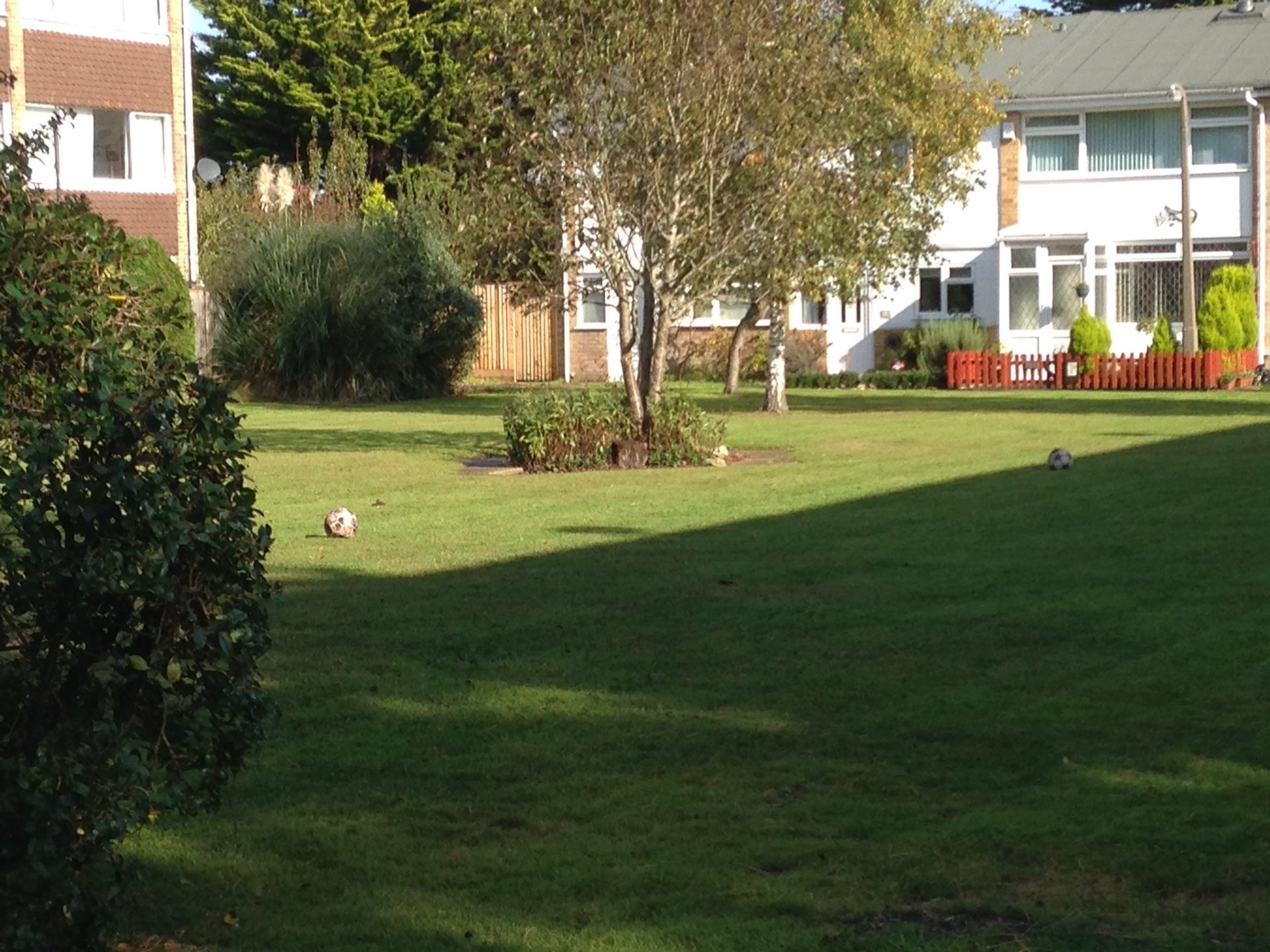 Flats with lawns and hedges