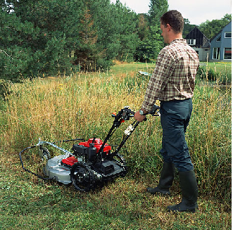 Tall Grass Mowing