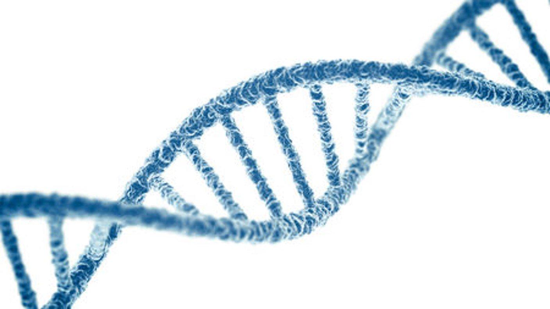 Design: Die digitale DNA im Museums