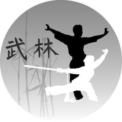 Wu Lin Kung Fu Wushu  à Orléans