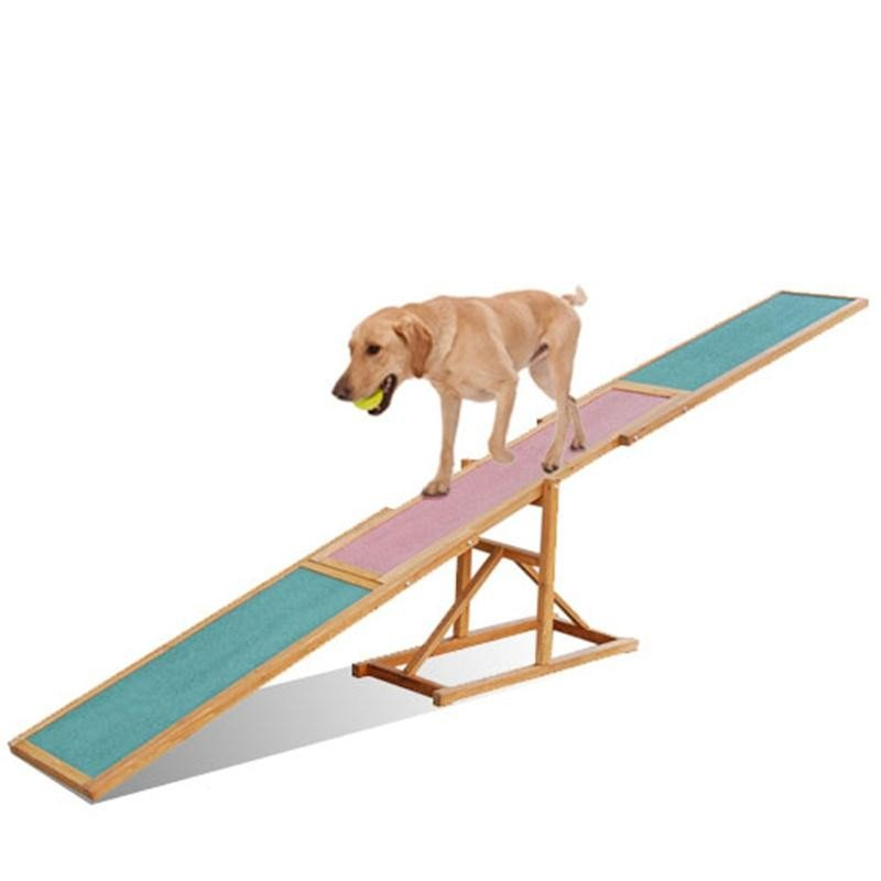 Dog on agility seesaw