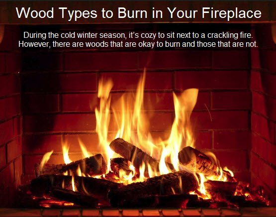 Wood Types To Burn In Your Fireplace