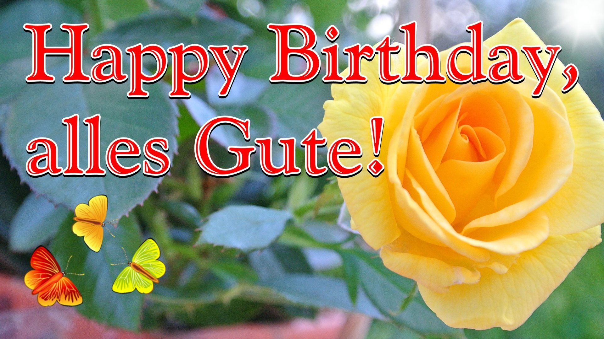 Geburtstagslied Lustig Happy Birthday Wunsch Ich Dir