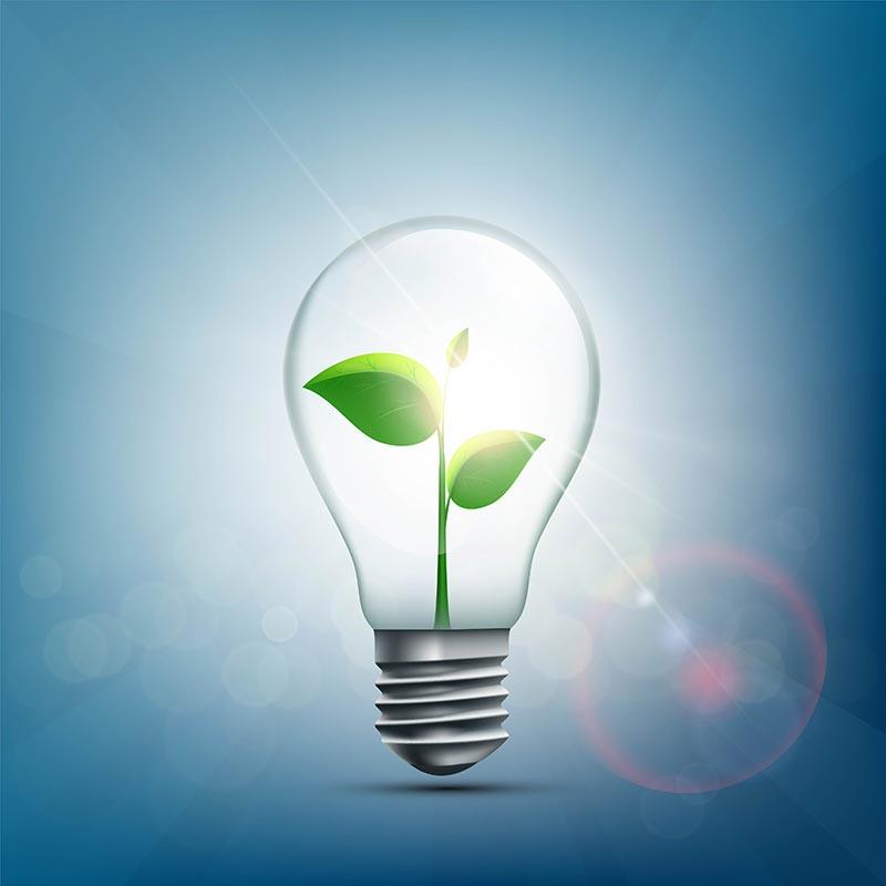 lampe économie d'energie