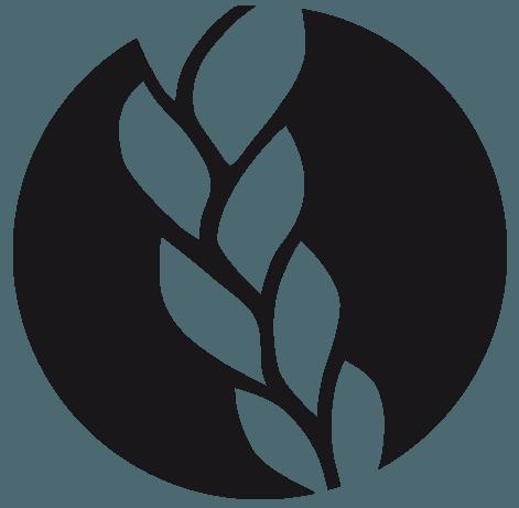 Das Mobile Haarstudio Für Flecht Und Hochsteckfrisuren