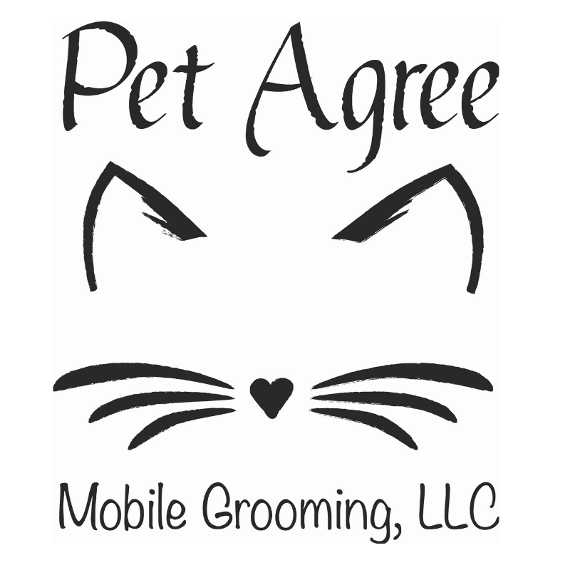 But why would you want to groom your cat?