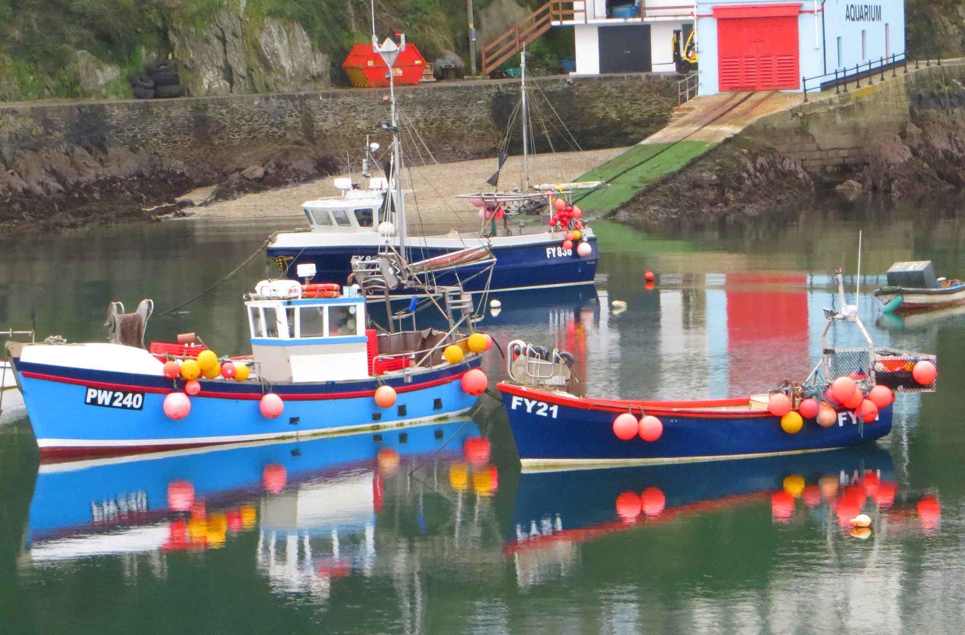 reflecting boats in Mevagissey harbour L A Kent Rogue Flamingo D I Treloar series
