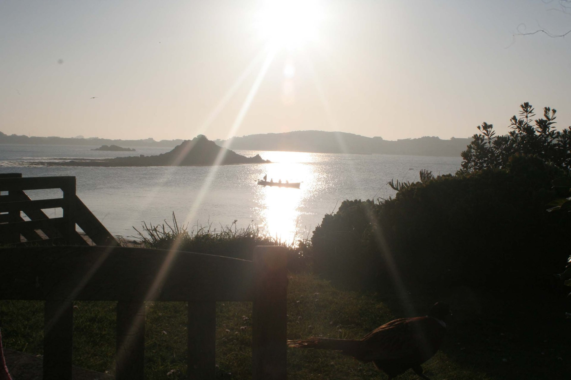 Gig at sunset Tresco Isles of Scilly Cornwall in photo gallery by L A Kent author of Sad Pelican