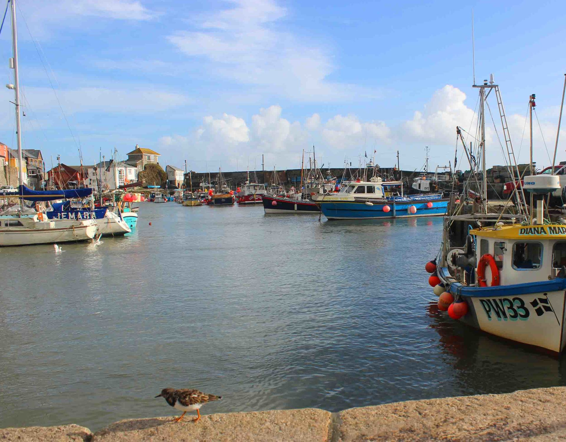 Mevagissey slipway Cornwall in photo gallery by L A Kent author of Rogue Flamingo