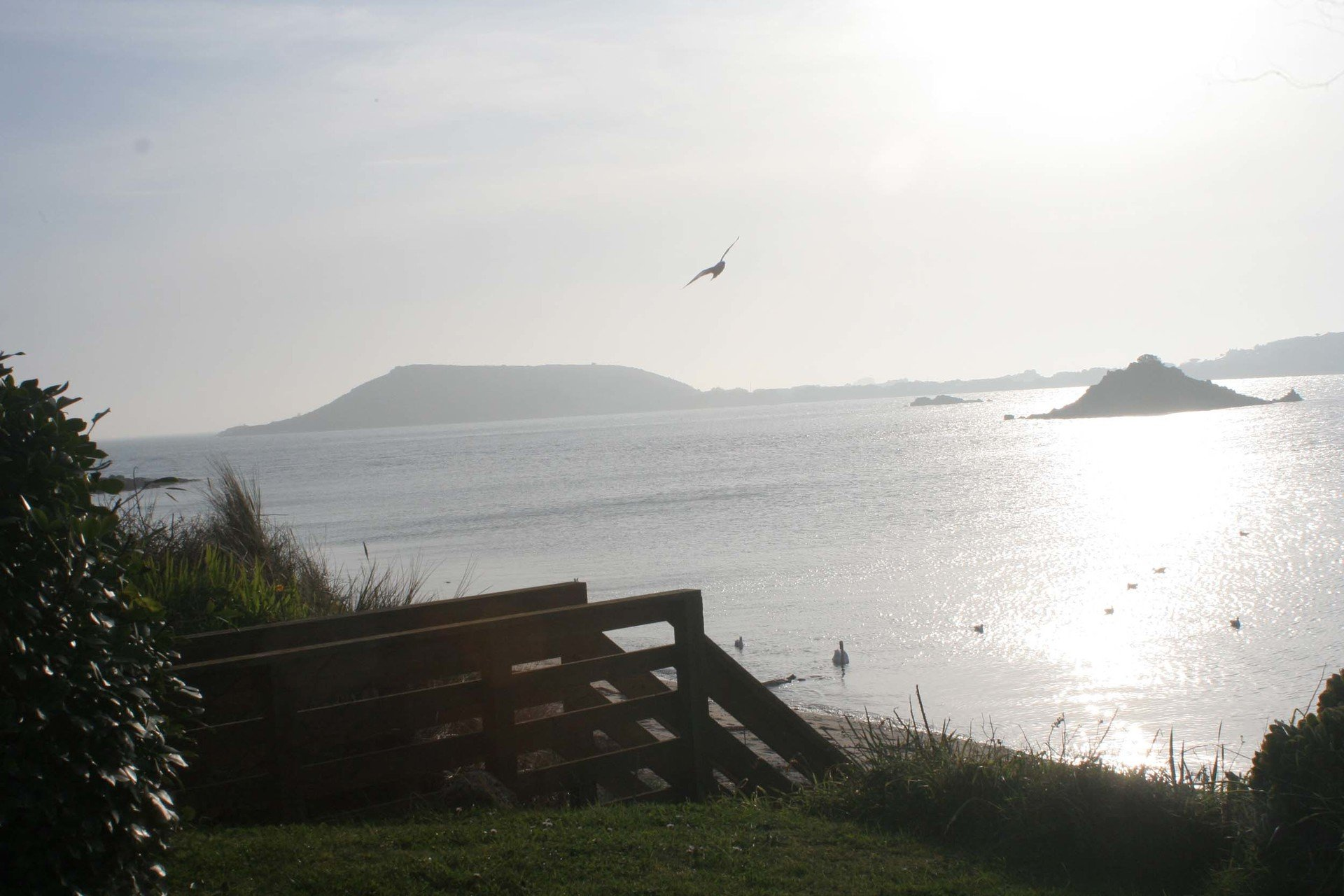 across the water to Bryher from Tresco L A Kent  Rogue Flamingo DI Treloar series