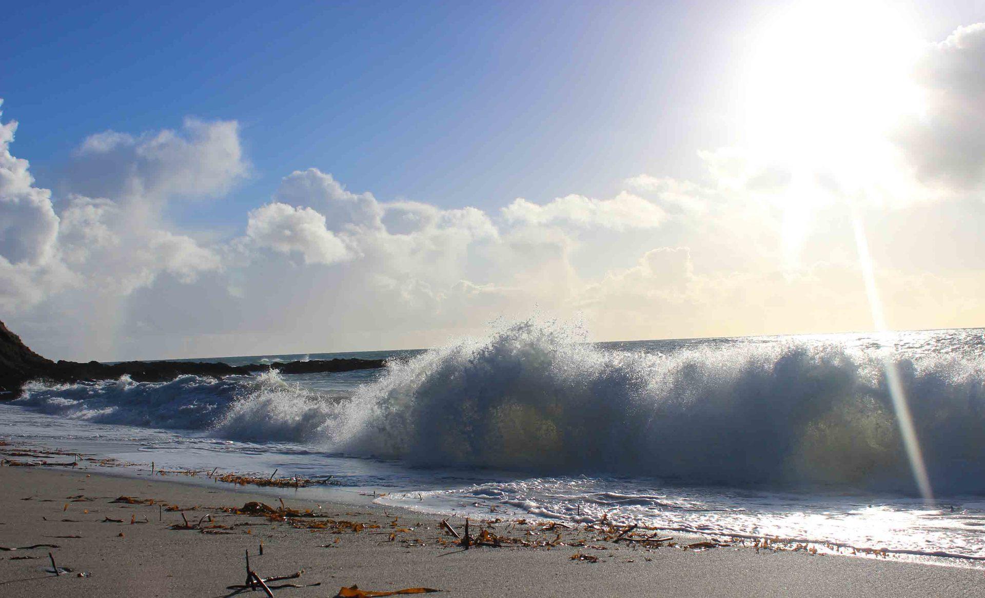 waves crashing on Vault Beach L A Kent Rogue Flamingo D I Treloar