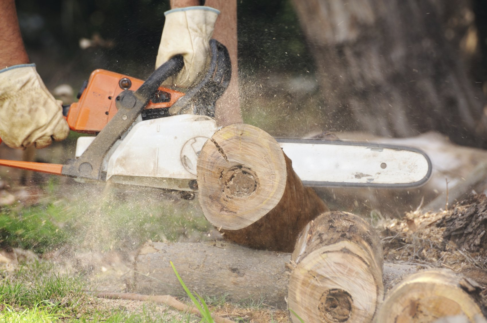 man cutting logs with a chainsaw