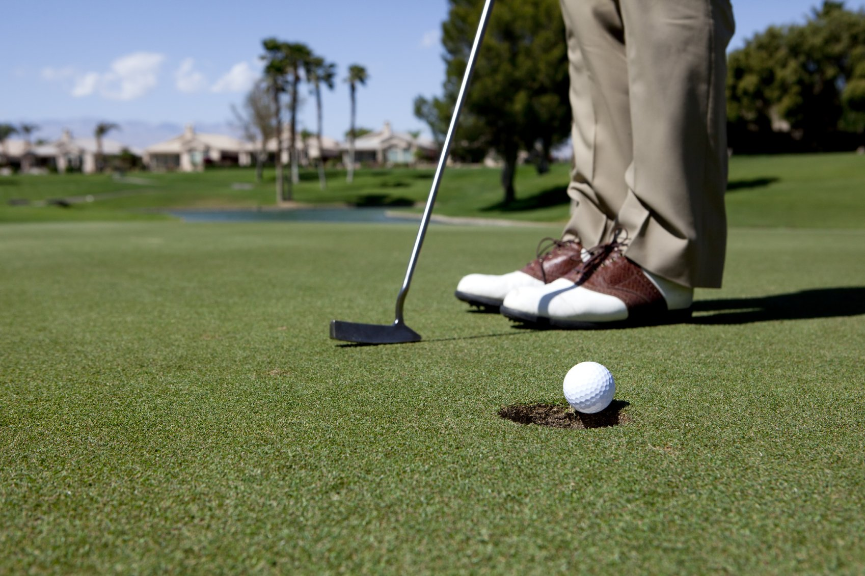 birdie golf hybrid golf merger The birdie golf-hybrid golf merger  birdie golf, inc, has been in merger talks with hybrid golf company for the past six months after several rounds of negotiations, the offer under discussion is a cash offer of $250 million for hybrid golf.